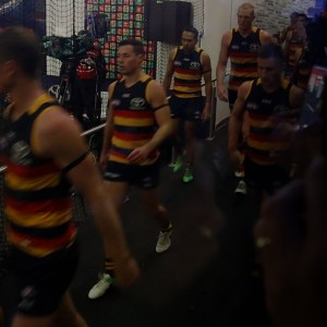 ADELAIDE CROWS COMPETITION